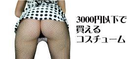 【プチプラ】コスチューム【3000円以下】